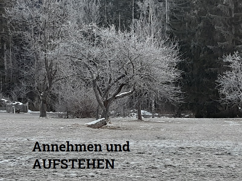 Baum,aufrecht